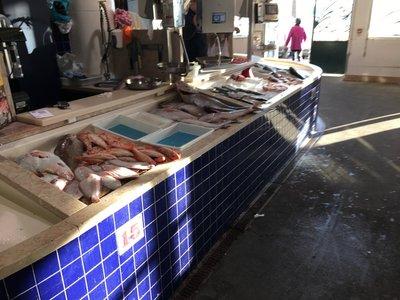 0799_sat_fish_market2.jpg