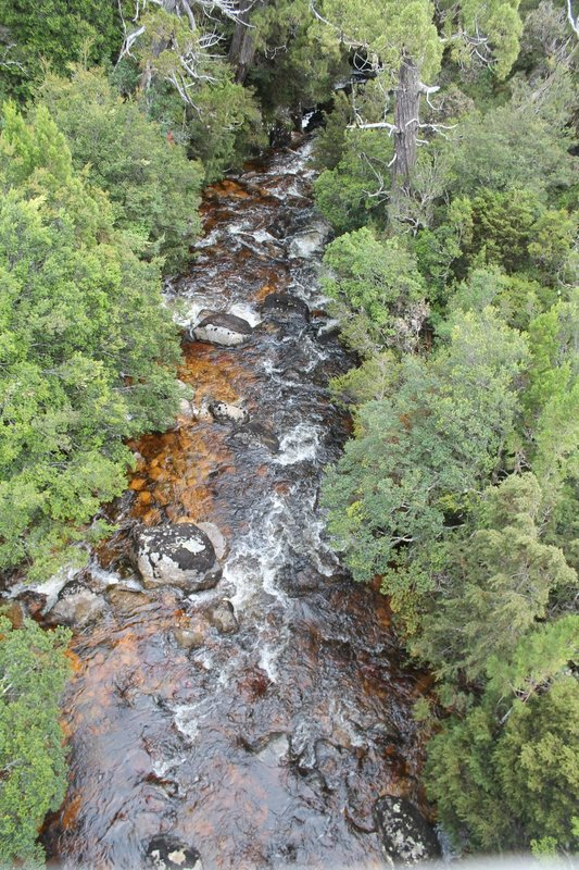 River view on Cradle Mountain walk