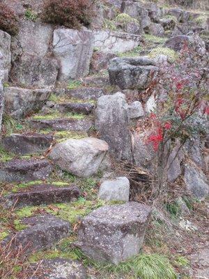 Garden of Ryokan