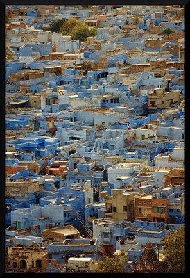 jodpur_houses.jpg