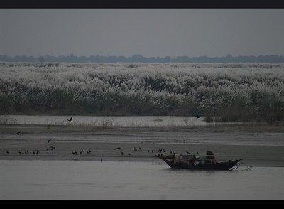 rajshahi_river.jpg