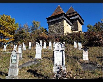 saxon_cemetery.jpg