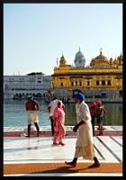 Sikh Devotees