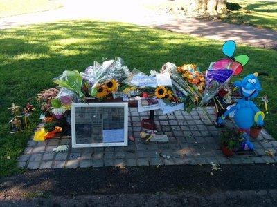 Impromptu Robin Williams Memorial