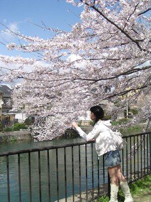 Kyoto_I__120_.jpg