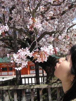 Kyoto_I__136_.jpg