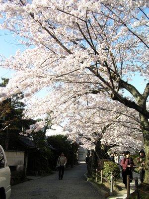 Kyoto_I__209_.jpg
