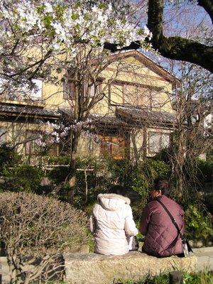 Kyoto_I__210_.jpg