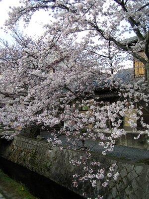 Kyoto_I__221_.jpg