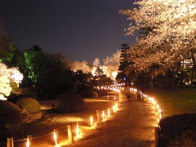 Kyoto_I__265_.jpg