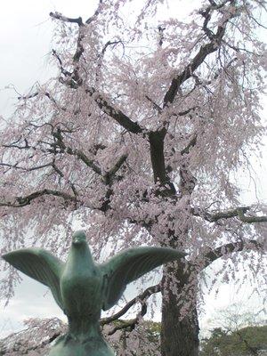 Kyoto_I__97_.jpg