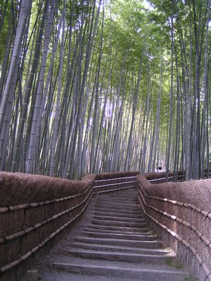Kyoto_Part_III__149_.jpg