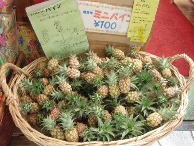 Little Pineapples