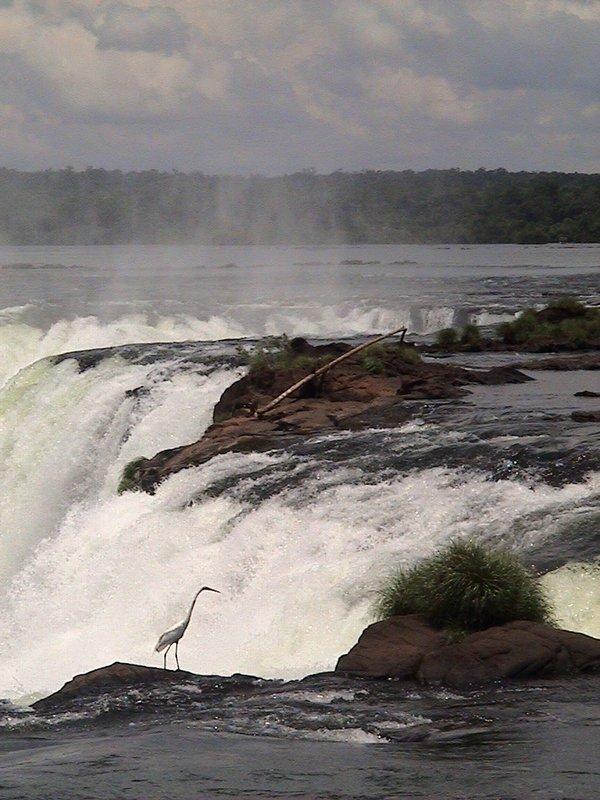 Iguazu Falls - El Diablo