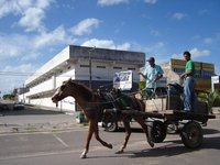 Local Transport in Northern Uruguay