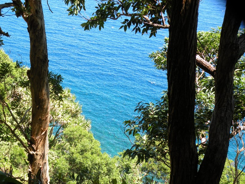 Road to Hana on Maui, James Brennan Molokai Hawaii