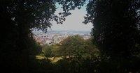 Freiburg View
