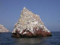 pisco_islas ballestas_waterrock