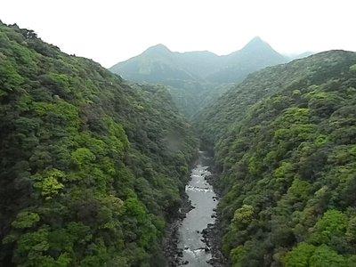 View from a bridge in Yakushima (Yakushima Japan)
