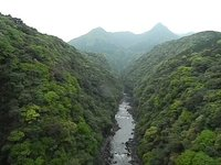 View from a bridge in Yakushima (Yakushima Japan)