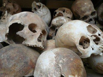 killing_skulls.jpg