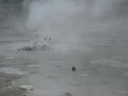 Rotorua - Mud pools