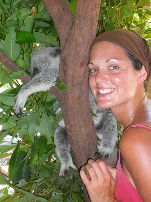 steve_irwi..d_koala.jpg