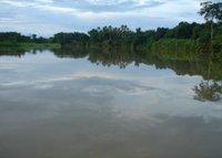 The Rio Sambu Darien Jungle Panama