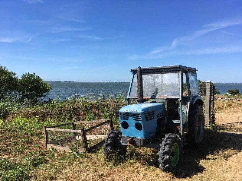 Lonely Tractor on the island of Pampus
