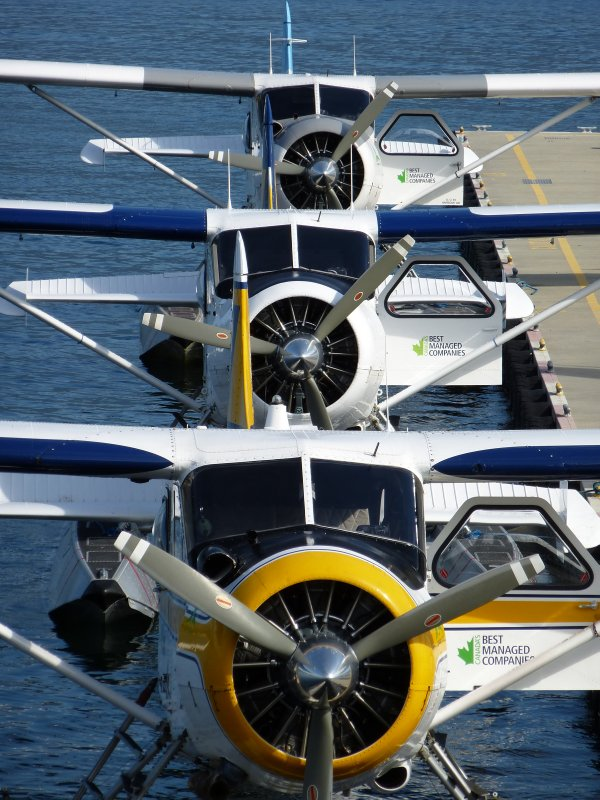 Floatplanes in Vancouver's Harbour