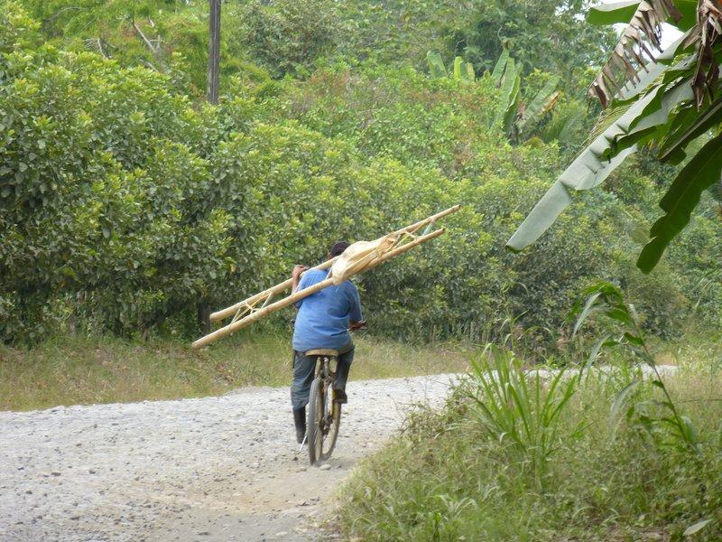Transport by bike