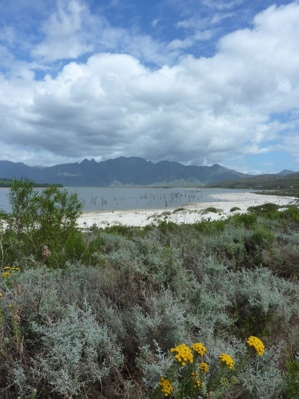Theewaters Nature Reserve near Franschhoek