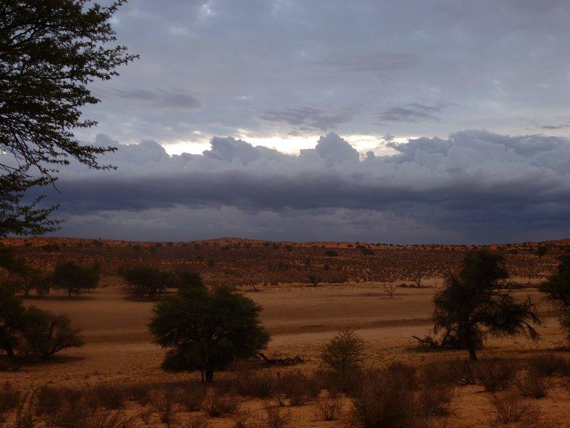 Kalahari Views