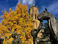 Church, Statue and Fall Colours