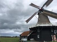 Koren en Mosterdmolen De Verwachting, Hollum, Ameland