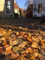 Bourtange Fall
