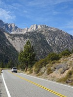 Road through Yosemite National Park