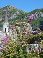 Minaret and flowers, Stari Bar
