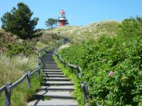 Stairs to Vlieland's Lighthouse