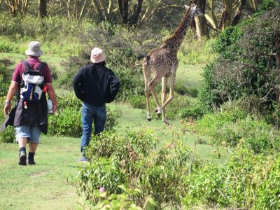 Walking with the wild animals, Naivasha, Kenya