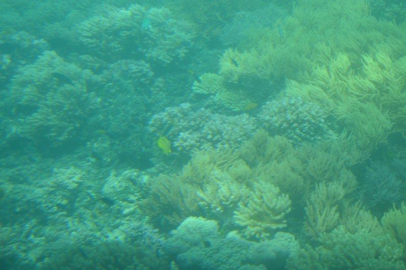 large_Cairns3__16_.jpg