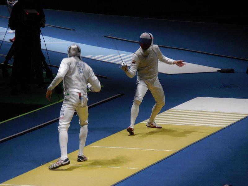 large_Fencing__5_.jpg
