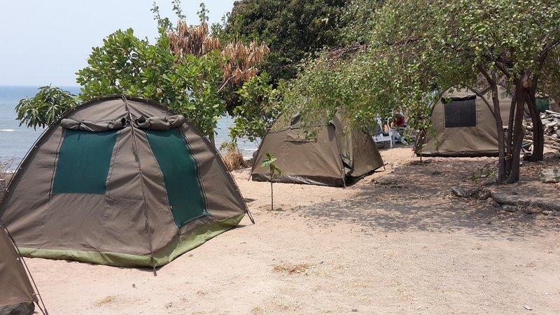 large_Malawi2__2_.jpg