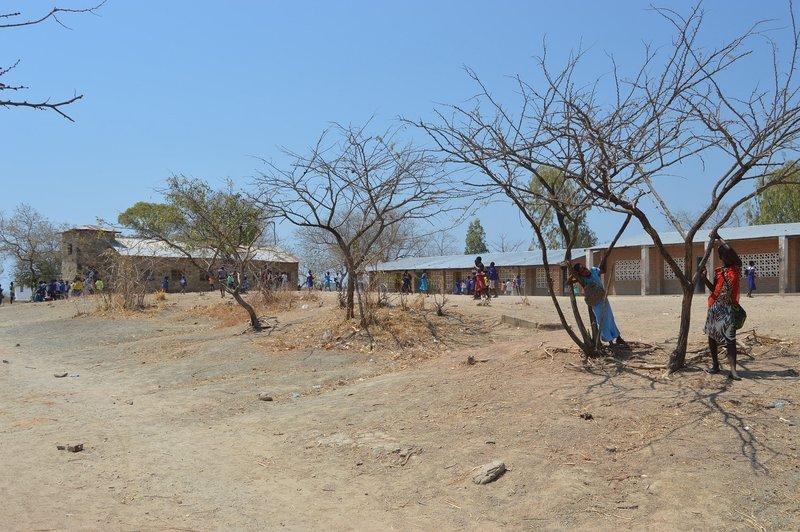 large_Malawi__10_.jpg