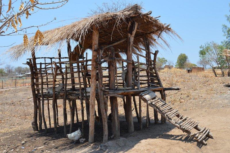 large_Malawi__11_.jpg