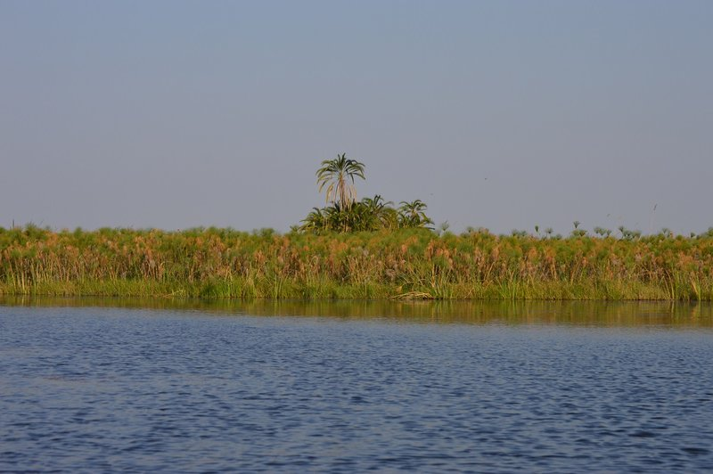 large_Okavango1__4_.jpg