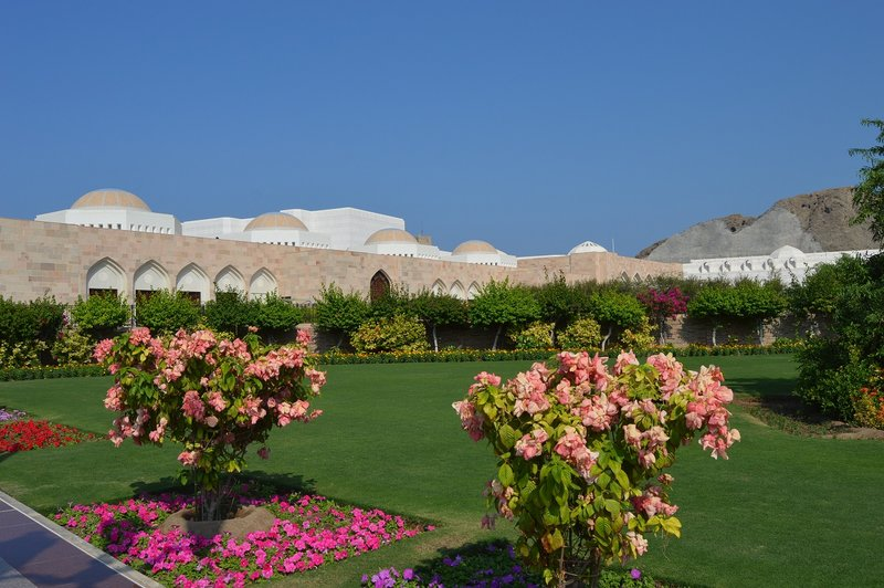 large_Oman__34_.jpg