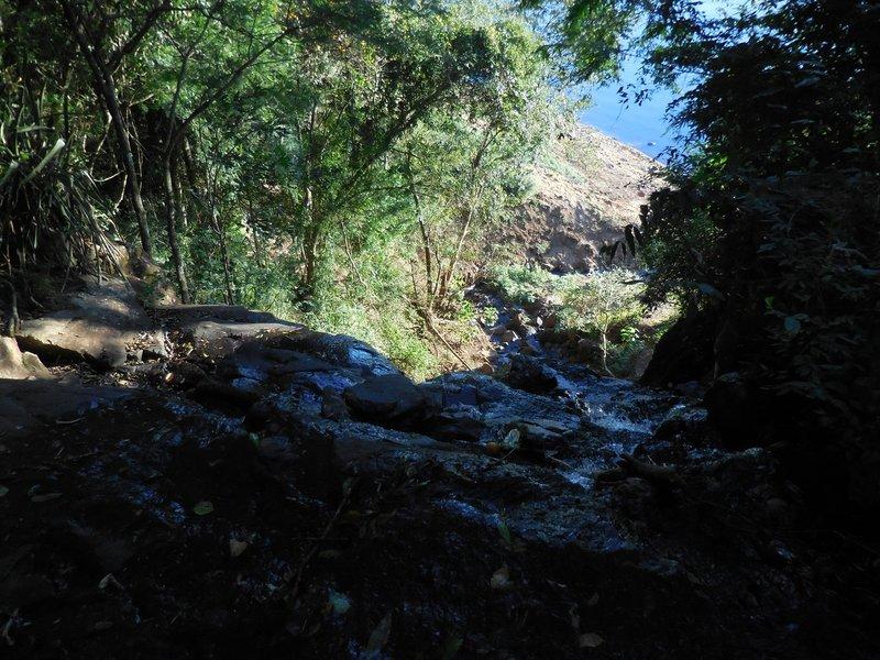 large_Puerto_Iguacu__7_.jpg