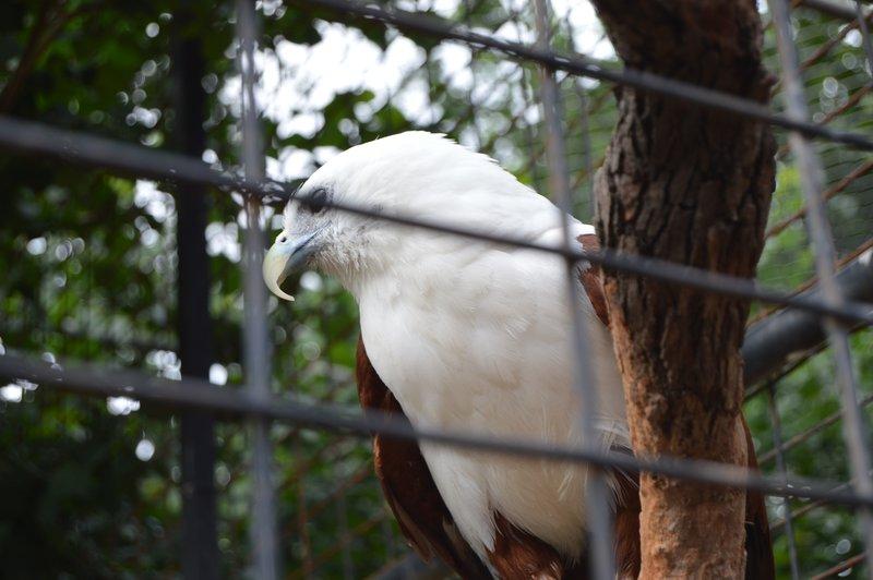large_Sydney01__17_.jpg