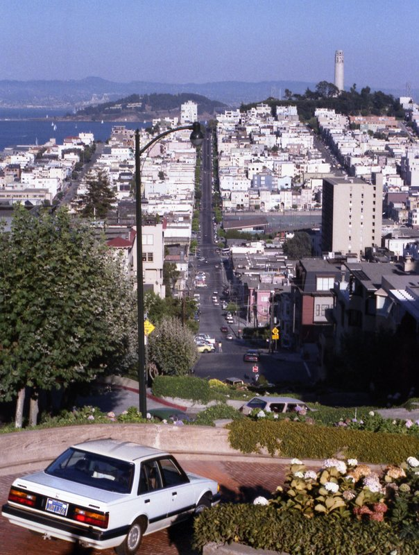 San Francisco's crookedest road, Lombard Street. Coit Tower on the hill.